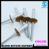 Painted Head Aluminum Alloy Colored Blind Rivets